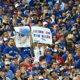 Blue Jays Crowd