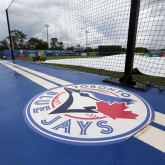 Minor League Blue Jays Relationship